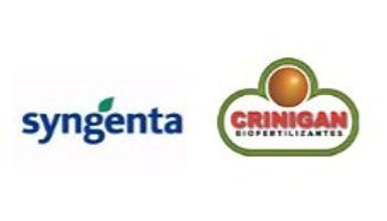 Syngenta y Crinigan se unen para aportar mayor rendimiento al trigo