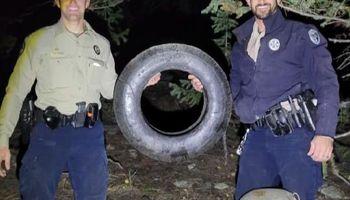 Liberan a un animal que pasó dos años con un neumático en el cuello