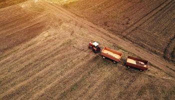 Soluciones innovadoras a cuatro problemas actuales del sector agropecuario
