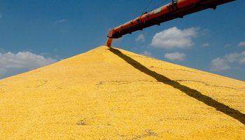 Farmers retienen granos para generar presión sobre los precios