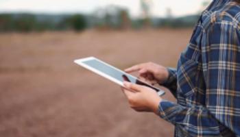 Inteligencia Artificial, Cloud y Blockchain: cómo pueden contribuir a la sustentabilidad alimenticia