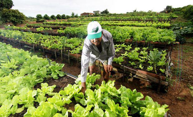 La anterior Secretaría de Coordinación y Desarrollo Territorial pasa a ser ahora la Secretaría de Agricultura Familiar, Coordinación y Desarrollo Territorial.