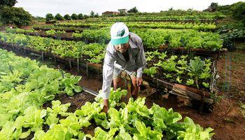 Cambios en la Secretaría de Agricultura Familiar