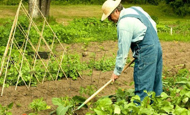 Santiago Hardie se refirió a los despidos en Agricultura familiar.