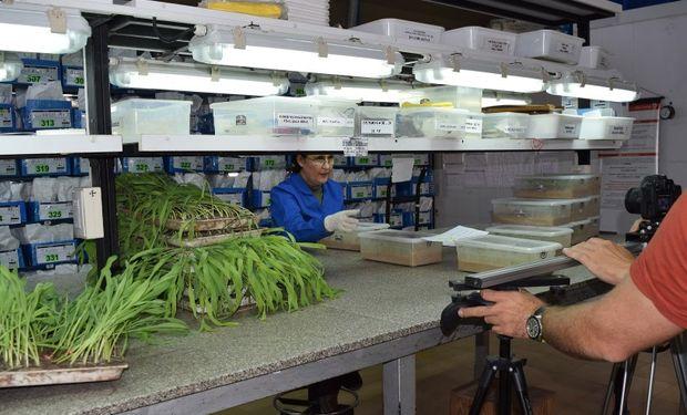 Comienza el nuevo ciclo del programa Agricultura Consciente de Nidera.