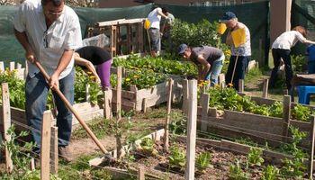 Auge de lo orgánico: buscan identificar a los productos de la agricultura familiar