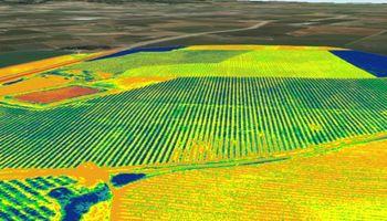 Agricultura por ambientes: un traje a la medida de cada suelo