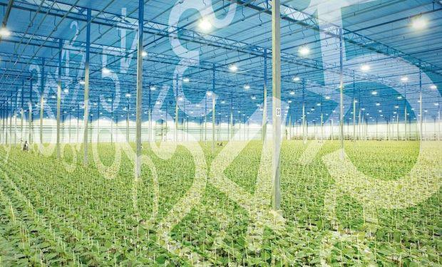 De dónde son y qué hacen: las 10 startups finalistas del Programa Agrifoodtech Latam 2020