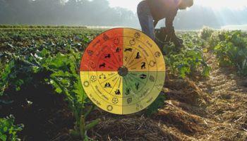 Agricultura biodinámica, un cambio de paradigma
