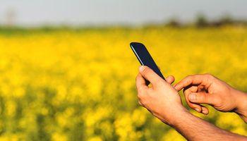 Implicancias de la Ley de Emprendedores para el agro
