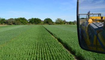 Desafíos para el agro de cara al 2018: la producción busca su potencial