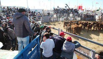 AgroActiva 2020: todos sus sectores se preparan para atraer a miles de visitantes