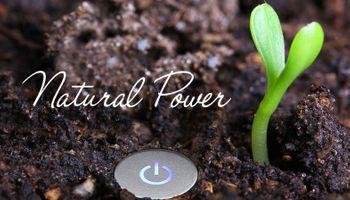 Agrocube: naturalmente poderoso
