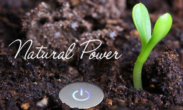 ¿Te vas a dejar atraer por el poder de la naturaleza?