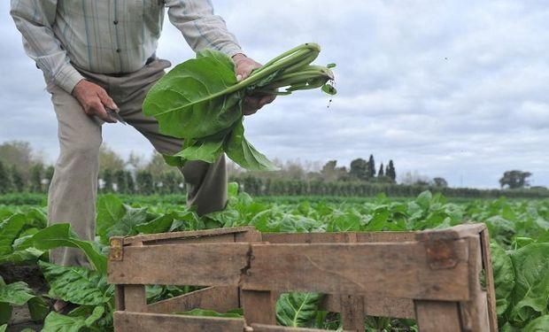 Agroecología, una alternativa sustentable.
