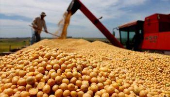 En 2016 creció un 25% las exportaciones agroindustriales