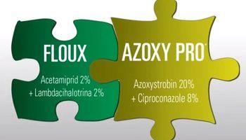 Azoxy Pro y Floux: los nuevos productos de Agrofina