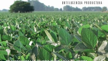 Nuevo insecticida Kier III: calidad con compromiso