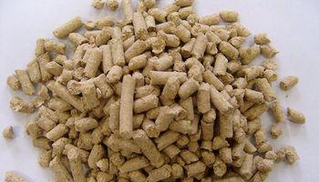 Productores de expeller de soja pidieron la quita de retenciones para lograr ventas por US$ 1.000 millones