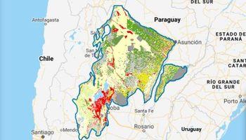 Una plataforma online busca ordenar el avance de la soja en el Gran Chaco argentino