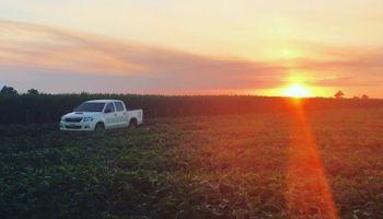 La agroindustria ingresó más de US$ 4000 millones en el primer bimestre