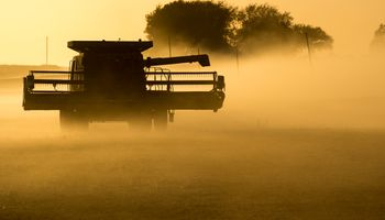Por primera vez en años, farmers podrían sufrir pérdidas