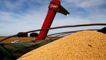 Plan Belgrano: Agroindustria informó el precio promedio para el mes de agosto