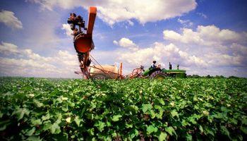 Exportaciones de agroquímicos cayeron 26,3%