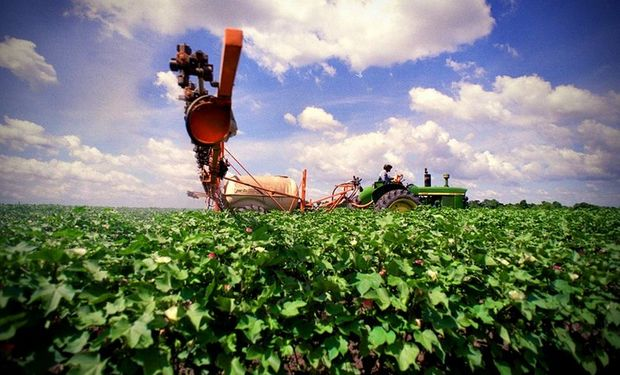 Los destinos de las exportaciones de agroquímicos y fertilizantes se concentraron en el mercado regional, especialmente: Brasil, Paraguay, Uruguay, Bolivia y Chile