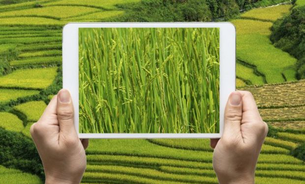 Dos emprendimientos de base tecnológica con foco en el agro.