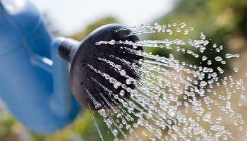 Técnicas para ahorrar agua en la huerta