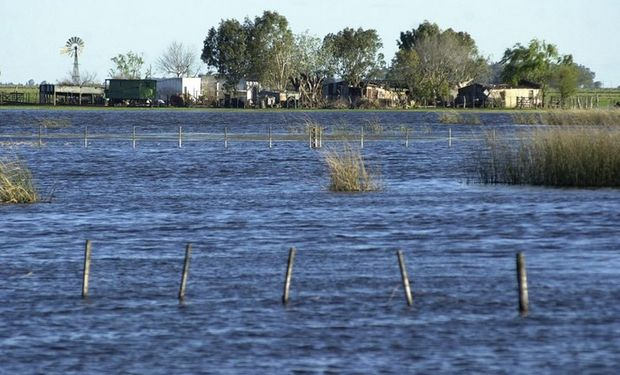 Las aguas en los campos bonaerenses se estacionaron por meses y provocaron pérdidas difíciles de soportar para los productores. Foto: Archivo / Fabián Marelli