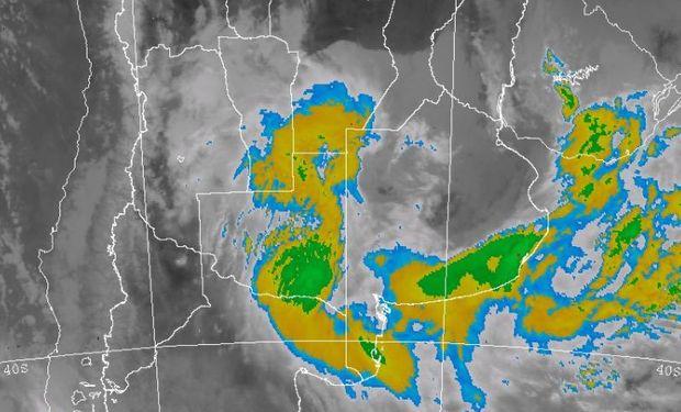 Abundantes lluvias afectan a regiones claves para el trigo.