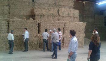 Avanza negociación para exportar alfalfa a China