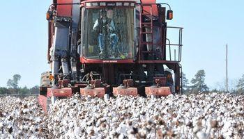 Aumento salarial en la actividad arrocera, algodonera y almacenamiento de granos