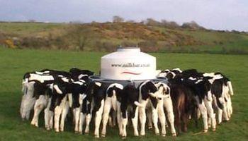 Alimentación automatizada en el tambo