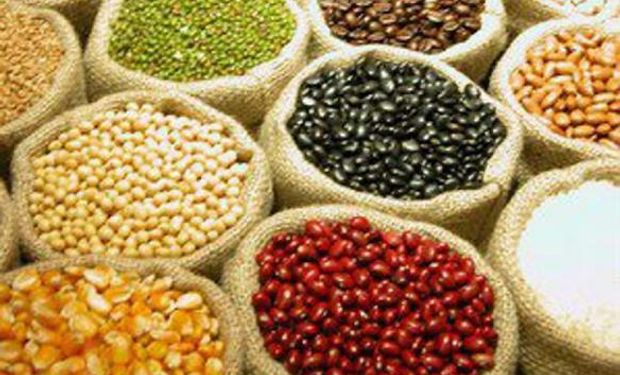 Alimentos: sigue la volatilidad en los precios