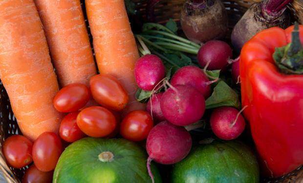Especialistas del INTA y Senasa atenderán consultas y asesorarán sobre el manejo sostenible de la producción frutihortícola a fin de garantizar la inocuidad de los alimentos.