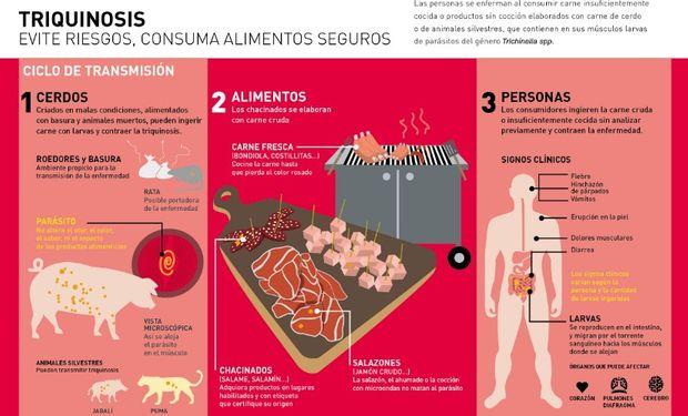 Triquinosis: recomendaciones para prevenir la enfermedad.