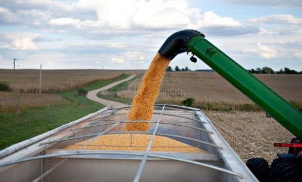 Una de las cuestiones que ponen los productores en la balanza para decidir la modalidad de almacenaje inmediata a la cosecha son los costos