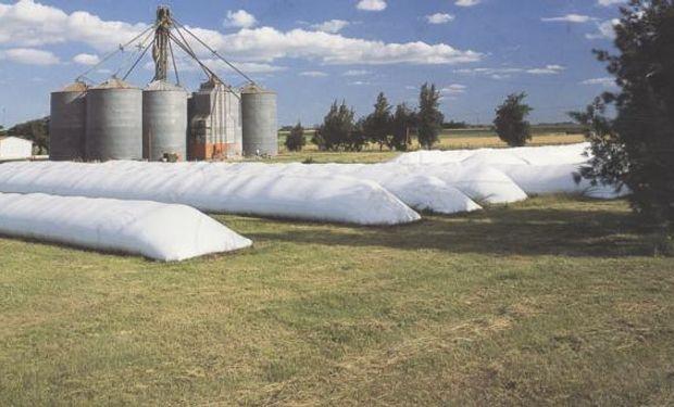 Hay cuidados deben tenerse en cuenta para que la calidad del grano no se vea afectada.
