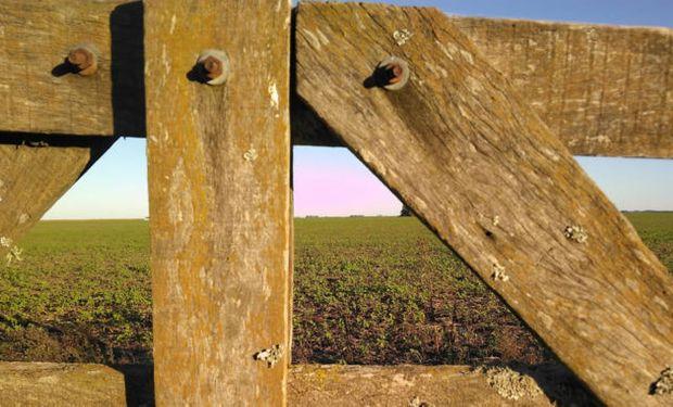 Se congelan los alquileres: cómo alcanza a los campos y a las viviendas rurales