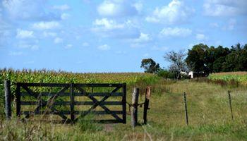 Control: los alquileres agrícolas se deberán registrar en la AFIP