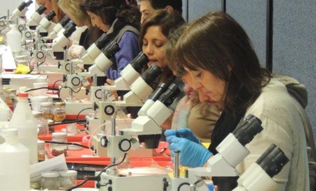 El laboratorio es un referente internacional en temas vinculados a calidad de semillas.