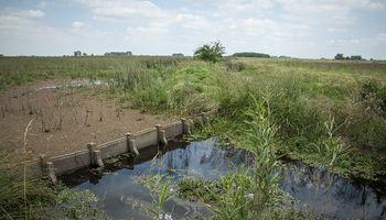 Claves para que el agua se vaya rápido de los campos