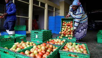 Designan al 2021 como el año de las frutas y verduras, una iniciativa para luchar contra el hambre y la malnutrición