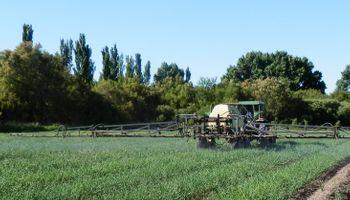 Lanzan un proyecto de Ley nacional para regular la aplicación y gestión de fitosanitarios