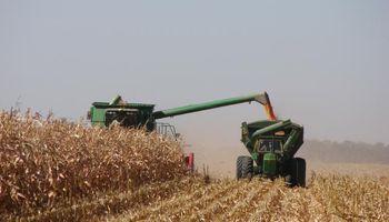 Estiman una leve reducción de la producción agrícola en Argentina