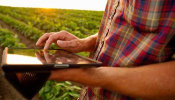 Mi Lote: nueva app que ayuda al productor a elegir los híbridos de maíz