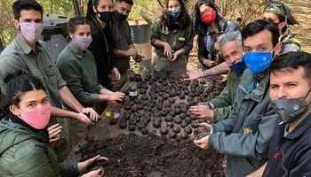 """Córdoba: buscan armar 10 mil """"bombas de semillas"""" para reforestar las sierras tras los incendios"""
